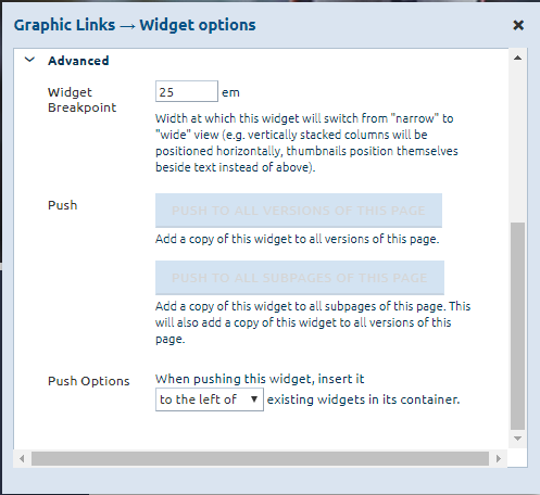advanced_graphic_links_widget_options.png